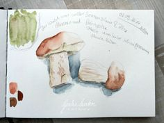 Inspirations fürs Naturskizzenbuch: Spätsommerwald Kunstjournal Inspiration, Diy Crafts, Watercolor, Blog, Painting, Watercolour Paintings, Nature Sketch, Porcini Mushrooms, Painting Flowers