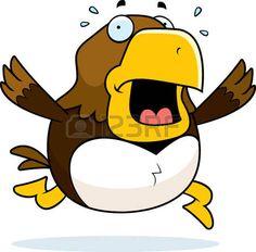 • • • — — — • • •   PiS Hawk!