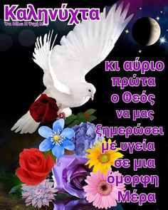 Good Night, Good Morning, Beautiful Pink Roses, Night Pictures, Thalia, True Words, Instagram Posts, Tattos, Quotes