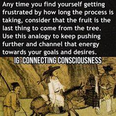 Buddhist Wisdom, Spiritual Wisdom, Awakening Quotes, Spiritual Awakening, Inspiring Quotes About Life, Inspirational Quotes, Motivational, Divine Timing, Mind Body Spirit