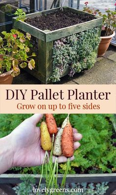 DIY Pallet Planter -
