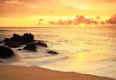 Tudo o que eu queria hj!Praia, sol e água de coco...