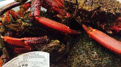 Pescadería Manolo, con la calidad Pesca de Rías!!!
