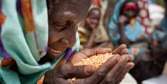 Global hunger figures decline by more than 200 million