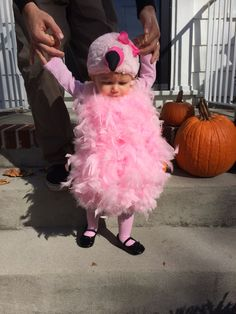 Hot glue pink boas on a onesie. Add pink tutu, stockings/leggings and flamingo hat Babys 1st Halloween, Toddler Girl Halloween, Toddler Halloween Costumes, Halloween Cosplay, Halloween Kids, Flamingo Costume, Flamingo Party, Frozen Costume, Pink Pumpkins