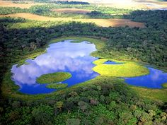 Pantanal, the world's largest freshwater wetland. One of the most beautiful places in the Earth!