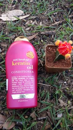 """Hello Beauties! Today's post is going to be a review an extensive review on Organix Anti-Breakage Keratin Oil Conditioner . Before I go further giving my views on this hair product have a quick read on what the product claims.  It says """"Indulge in rich, fortifying keratin proteins that reinforce each strand, increasing elasticity...Continue Reading """"Organix Anti-Breakage Keratin Oil Conditioner Review """" →"""