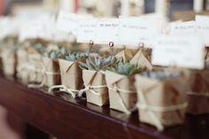 Une petite plante pour les invités