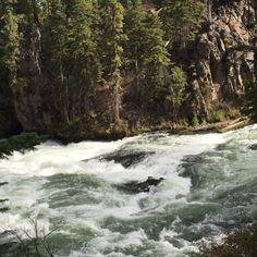 Benham Falls outside Bend and Sunriver, Oregon. ------------------------------- @socalgolfblog