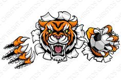 Buy Tiger Holding Golf Ball Breaking Background by Krisdog on GraphicRiver. A Tiger angry animal sports mascot holding a golf ball and breaking through the background with its claws Pet Logo, Soccer Tattoos, Typography Design, Logo Design, Angry Animals, Soccer Poster, Soccer Ball, Golf Ball, Basketball