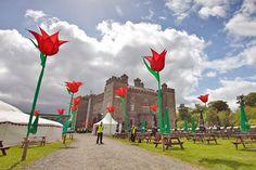 Outdoor Music Venues: Kings of Leon, 2011 Slane Castle Concert. Photo by Slane Concerts
