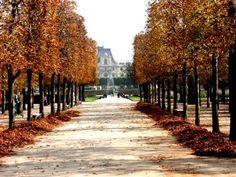 Paris in the Autumn