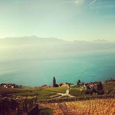 Lake Geneva, Switzerland #europe #view #landscape #colors