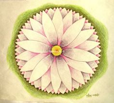 98 Lotus by Miekrea NL