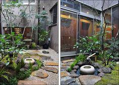 Japanese Garden Plants, Japanese Garden Design, Japanese House, Japanese Gardens, Japanese Style, Dwarf Japanese Maple, Lawn And Landscape, Basic Style, Garden Landscaping