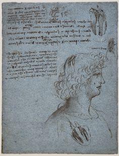 Studies of the heart, and the head of a youth in profile Leonardo da Vinci (Vinci 1452-Amboise 1519) #TuscanyAgriturismoGiratola