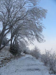 Sur le sentier du lac Pavin et du  Puy de Montchal / Auvergne