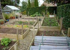 Tips-Membuat-Kebun-Sayuran-Di-Pekarangan-rumah-The-Vegetable-Gardening-Ideas.jpg 915×666 pixels