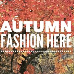 Prairie  Outfitters Fall Fashion Is Here Exclusive Designs For Your Children  #slowfashionmovement #slowfashion #slowfashionoctober #prairieoutfitters #childmodels #vintagestyle #vintage #vintagefashion #smalltown #smalltownlife #prairiefashion #homeschooling #homeschool #homeschoolmoms #couturekids #couturedress