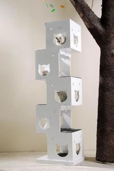 Unique Cat Trees - You'll Simply Love The Designs!