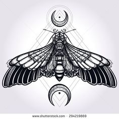sacred geometry silhouette | Butterfly moth with crescent moons, sacred geometry. Elegant design ...