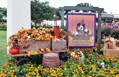 O parque Disney's Magic Kingdom está en clima de Halloween. Você já teve a oportunidade d de visitar a Disney durante este período e de participar da festa de Halloween do Mickey?  Saiba mais em: http://www.viagensdicas.com/disney/conheca-festa-halloween-mickey/