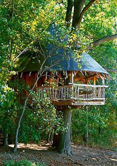 cute little tree house