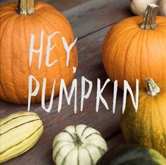 Everyone's invited to the pumpkin party.
