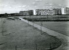 Datering tot: 1962-12-31 Beschrijving: Het Nieuwlandpark aan de Vlaardingerdijk. Rechts flats op de Dr.Schaepmansingel.