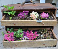 turn an old toolbox into a garden planter