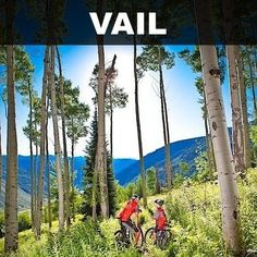 Vail offers killer lift-accessed mountain biking, all kinds of road rides and a long, cruisy bike path for an all-around bike experience par excellence.Image courtesy of Vail Resorts / Vail Mountain - vail.com