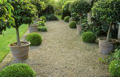 gravel and laurel terrace Bunny Guinness Gravel Patio, Gravel Garden, Garden Pool, Garden Paths, Pea Gravel, Glass Garden, Bush Garden, Modern Landscaping, Garden Landscaping