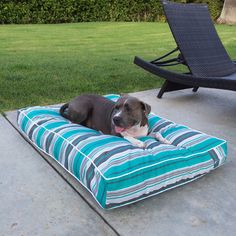 Animals Matter Too® Outdoor Stripe Floor Pillow – Animals Matter, Inc.
