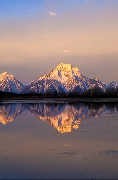 Mount Moran reflected in the Oxbow Bend of the Snake River at sunrise.