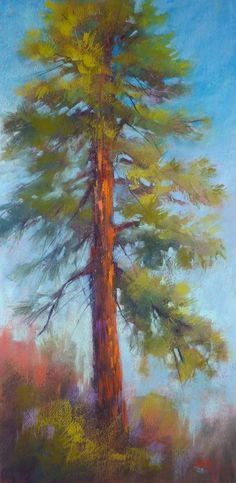Douglas Fir TREE Painting Large Original by KarenMargulisFineArt, $225.00