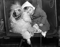 Suzanne Paul, from Epsom, embracing a poodle at the International Poodle Club Show at Seymour Hall, Marylebone, London. (Photo by Folb/Topical Press Agency/Getty Images). 28th March 1956