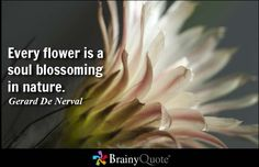 Every flower is a soul blossoming in nature. - Gerard De Nerval at BrainyQuote