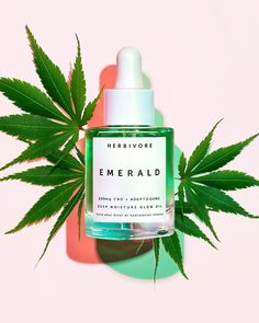 Brimming with CBD Oil, Cannabis Sativa Seed Hemp Oil and deeply hydrating Squalane along with soothing and irritation-calming Adaptogens, Emerald Deep Moisture Glow Oil is truly the Green Goddess of facial oils. The Body Shop, Kim Kardashian, Turmeric Root Extract, Glow, Endocannabinoid System, Fractionated Coconut Oil, Belleza Natural, Deep, Beauty Routines