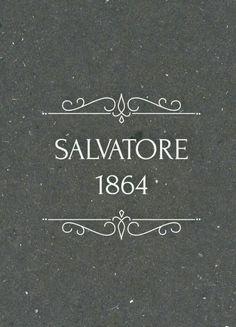 """The Vampire Diaries """"Salvatore Vampire Daries, Vampire Diaries Damon, Vampire Diaries Quotes, Vampire Diaries The Originals, Stefan Salvatore, Paul Wesley, Damond Salvatore, Delena, The Salvatore Brothers"""
