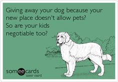 Free and Funny News Ecard: Giving away your dog because your new place doesn't allow pets? So are your kids negotiable too? Create and send your own custom News ecard. I Love Dogs, Puppy Love, Cute Dogs, Dog Quotes, Animal Quotes, Animal Memes, Baby Dogs, Doggies, Humane Society