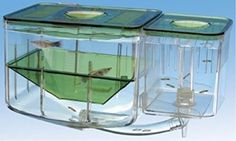 Fish Aquarium Nursery Automatic Fish Hatchery Breeding Box System - 5 1/4 In. X 4 In. X 4 1/2 In.