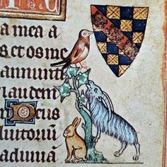 A hare, a goat, and a bird walked into the margins of a book of hours and nobody knows what happened! From the Hours of Jeanne d'Evraux created in France in circa 1325. New York, The Metropolitan Museum of Art, The Cloisters Collection, Ms. 54.1.2.