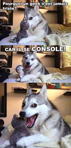 Ce chien a sorti sa meilleure blague et il est content !!!