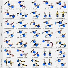 Exercise Ball Workout Poster Laminated - 35 Stability Ball Exercises - Total Body Fitness - Home/Gym Fitness Balance Ball - Work Your Core, Abs, Legs, Arms - Rehabilitation Posture Exercises Fitness Workouts, Yoga Fitness, Fun Workouts, At Home Workouts, Fitness Ball Exercises, Ball Workouts, Core Exercises For Women, Workout Routines For Women, Exercices Swiss Ball
