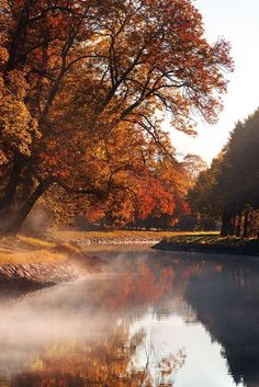 Autumn Fog II (by Christian Schweitz) . Relax with these backyard landscaping ideas and landscape design. Natur Wallpaper, Dame Nature, Autumn Scenes, Autumn Cozy, Autumn Morning, Early Morning, Autumn Aesthetic, Fall Pictures, Autumn Inspiration