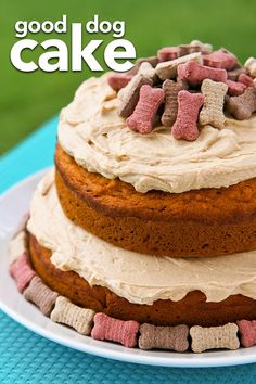 A dog cake recipe for dogs! My dogs love this cake recipe that is safe for dogs. #dogs #dog #cake #dogcake #puppy #pets #adoptdontshop #resucedog #dogbirthday #cake