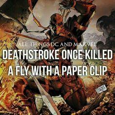Deathstroke kills a fly