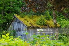 Old constructional shed on Lake Altausse #altaussee... #altaussee: Old constructional shed on Lake Altausse #altaussee… #altaussee