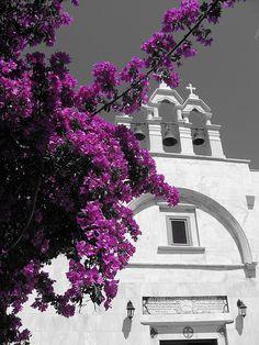 In the courtyard of the Monastery of Panagia Tourliani on Mykonos