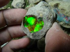 to program a crystal Does this natural Ethiopian Opal remind you of Kryptonite?Does this natural Ethiopian Opal remind you of Kryptonite? Cool Rocks, Beautiful Rocks, Simply Beautiful, Minerals And Gemstones, Rocks And Minerals, Mineral Stone, Rocks And Gems, Back To Nature, Stones And Crystals